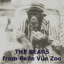 The Bears From Belle Vue Zoo cover art