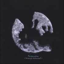 Nocturnitous (Nocturnity Instrumentals) cover art