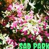 Sad Park Cover Art