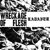 Wreckage of Flesh cover art