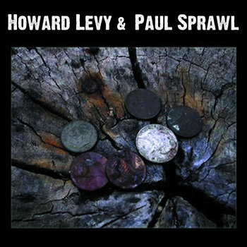 Howard Levy and Paul Sprawl (2005, album) by Howard Levy and Paul Sprawl