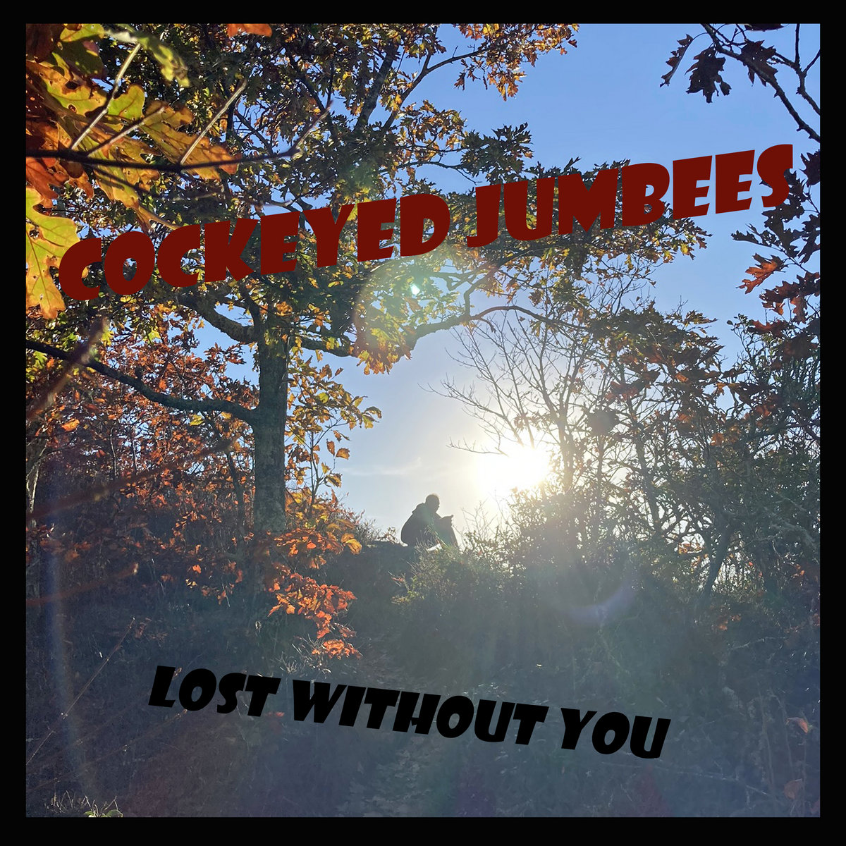 Lost Without You by Cockeyed Jumbees