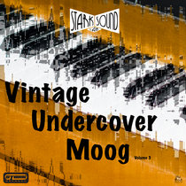 Vintage Undercover Moog Vol. 3 cover art